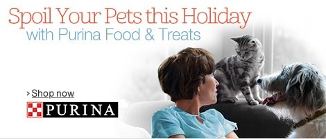 Spoil Your Pet this Holiday