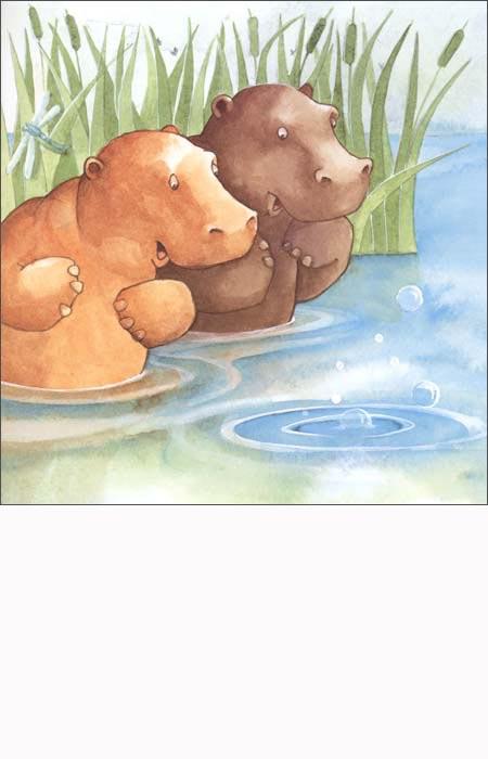 动物成长绘本(套装全3册):亚马逊:图书