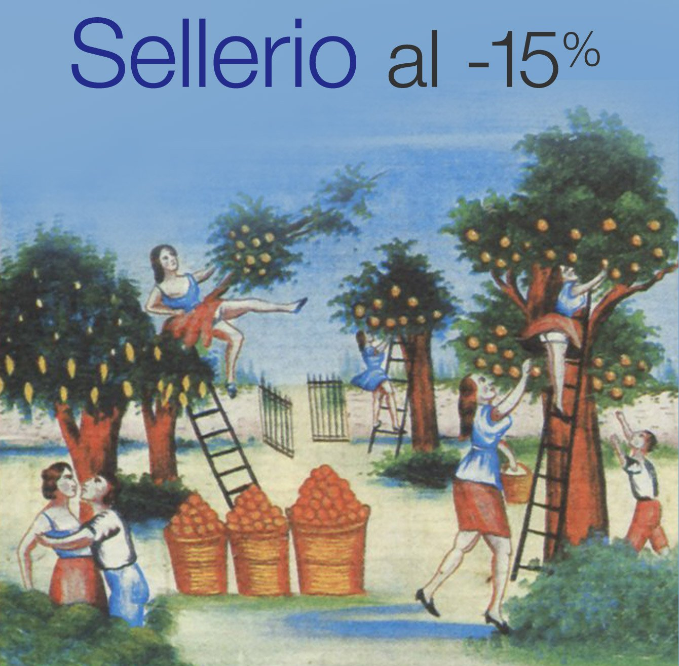 Sellerio al -15%