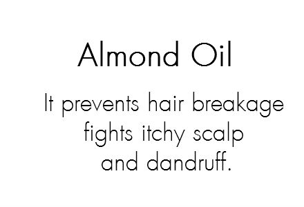 almond oil: Rich in Vitamin E, essential fatty acids, potassium and magnesium essential for hair growth. Moisturizes and strengthens hair, prevents hair breakage, fights itchy scalp and dandruff.