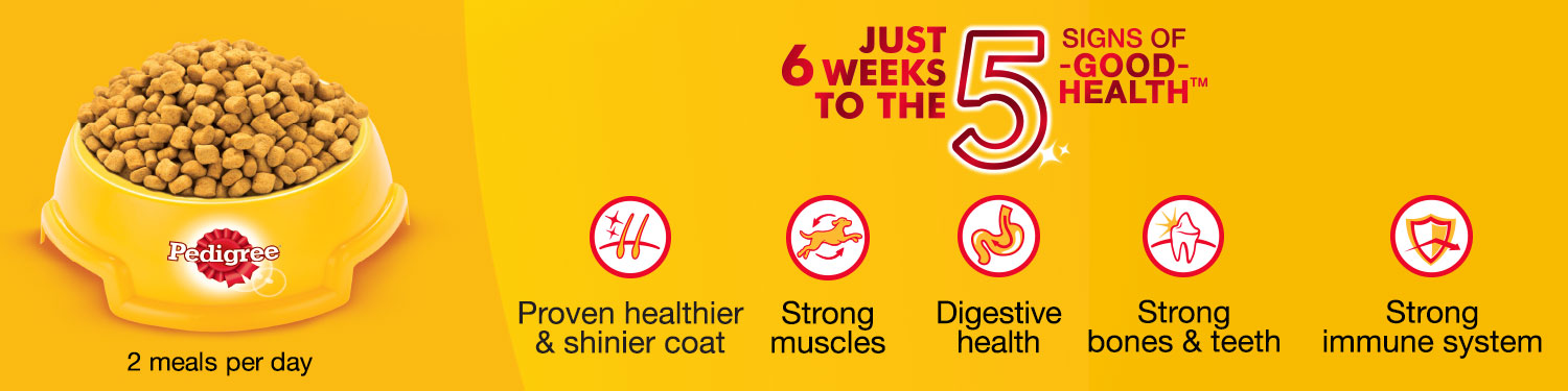 Just 6 weeks to the 5 sign of good health