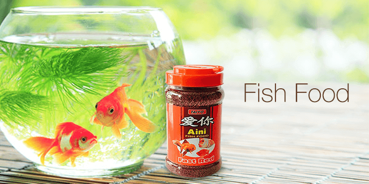 Fish supplies buy aquarium fish tank accessories for Where to buy pet fish