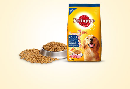 Pedigree Dry Meal