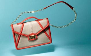Danielle Nicole Handbags!