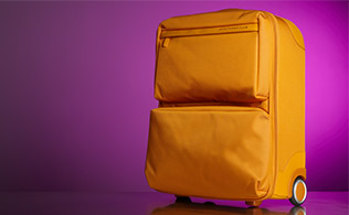 New Reductions: Mandarina Duck Luggage!