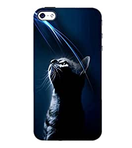 PrintDhaba Cat D-4025 Back Case Cover for APPLE IPHONE 5S (Multi-Coloured)