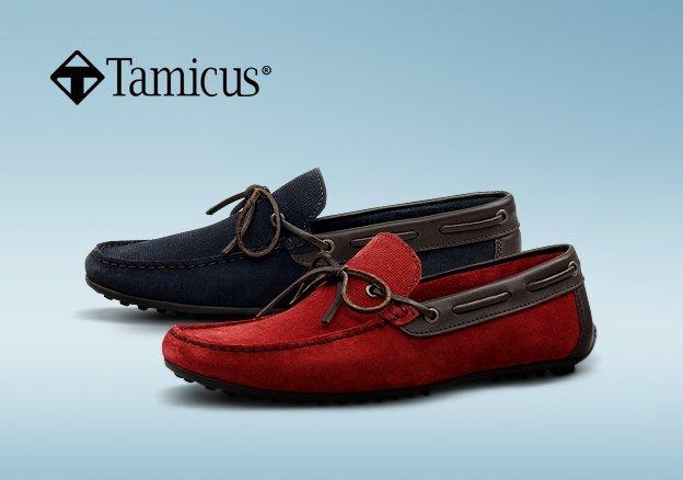 Tamicus
