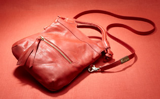 Foley & Corinna Handbags!