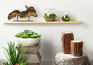 Natural Elements: Wood, Greenery & More!