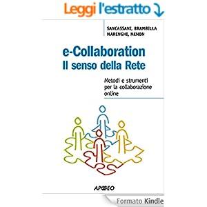 E-collaboration. Il senso della rete