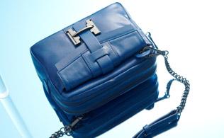 Halston Heritage Handbags!
