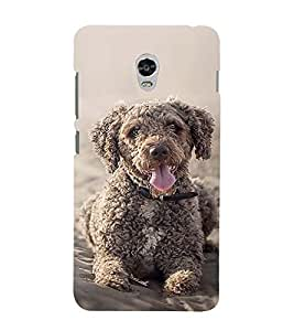 Vizagbeats Brown fur puppy Back Case Cover for Lenovo Vibe P1