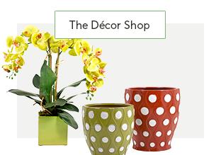 L'arredamento negozio : Patio & Garden Accenti!