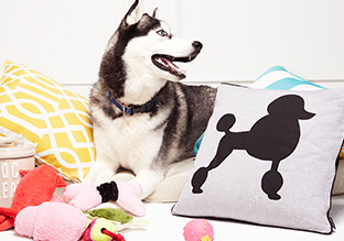 Gifts for the Animal Lover!