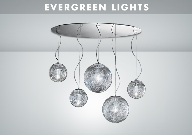 Evergreen Lights!