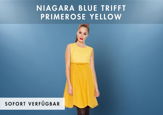 Niagara Blue trifft Primerose Yellow bis -74%