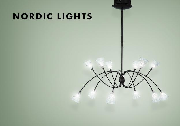 Nordic Lights!
