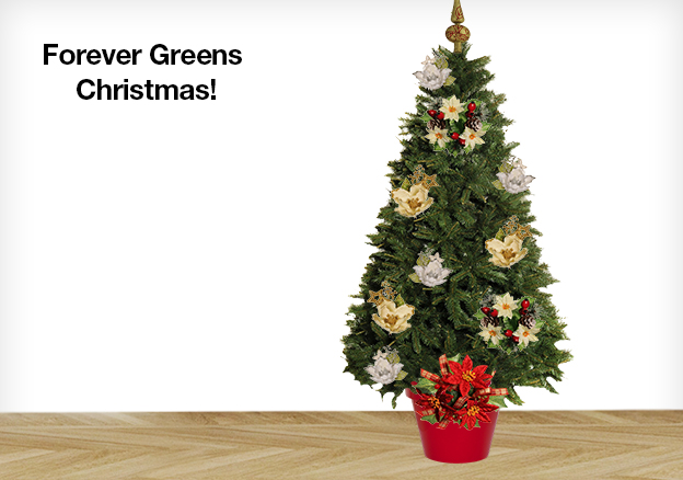 Forever Greens Christmas