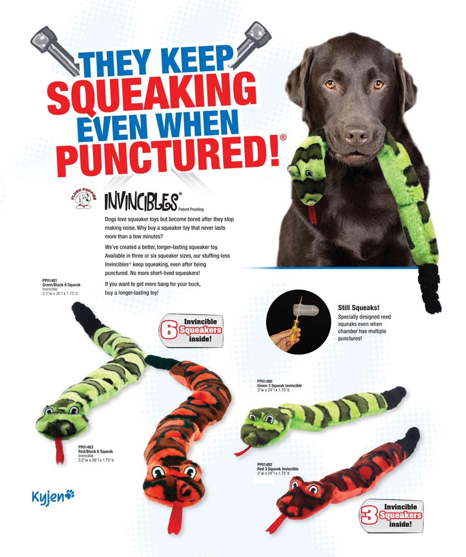 Pet Supplies : Pet Squeak Toys : Kyjen 2436 Invincibles