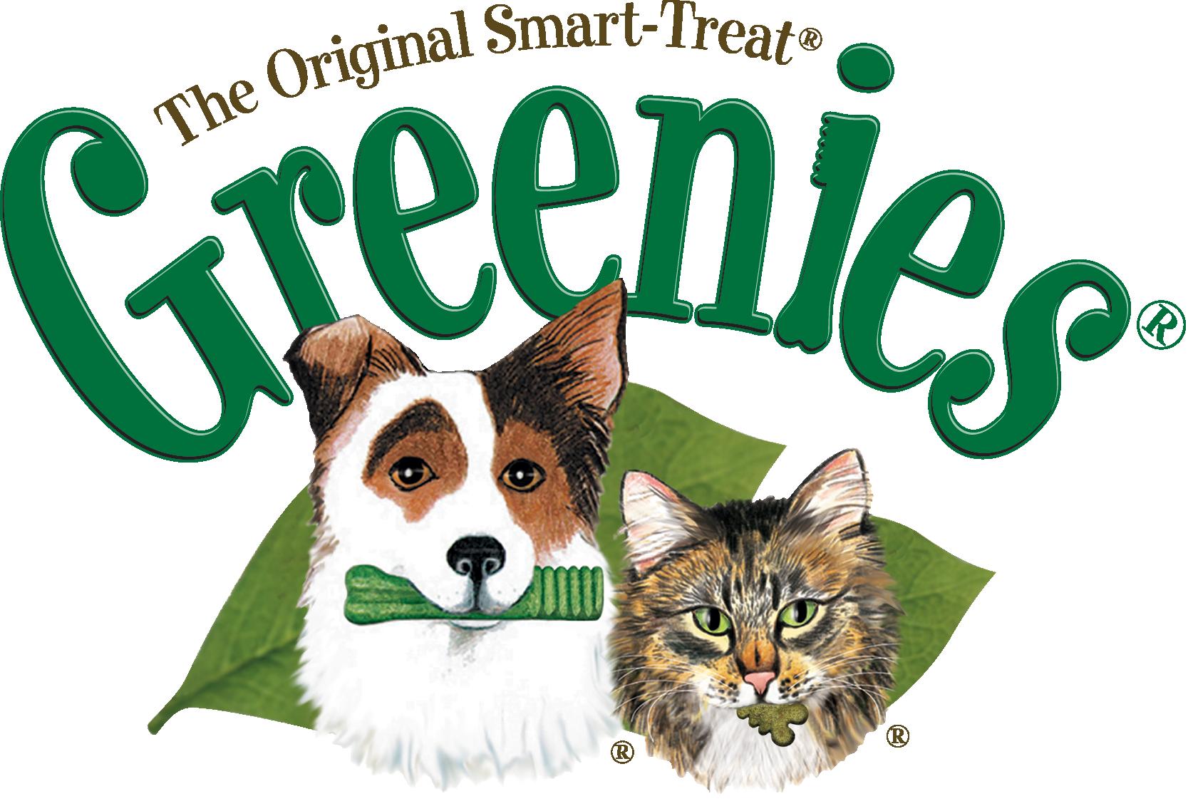 Amazon.com : Greenies Dental Chews for Dogs, Regular, Pack