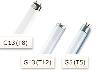 Leuchtstoffröhren